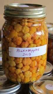 bakeapples
